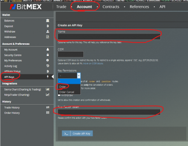 Risk Management Bitmex API settings